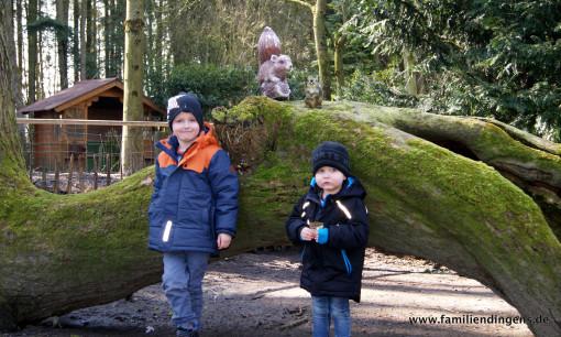 Liam und Jano in Birgit's Tiergarten